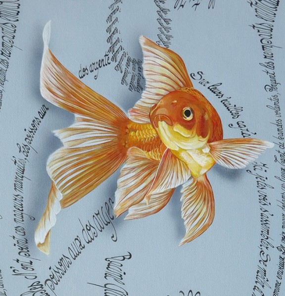 Goldfishes detail