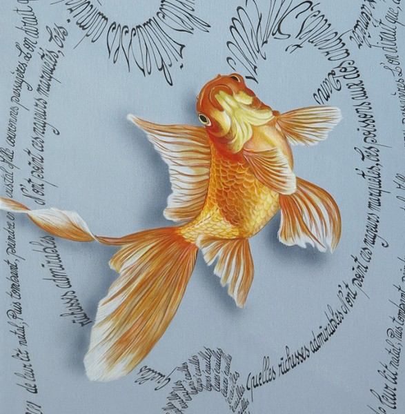 Goldfishes detail2
