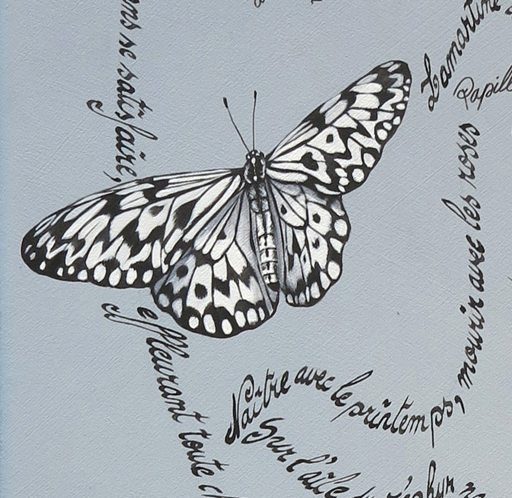 papillons-detail2