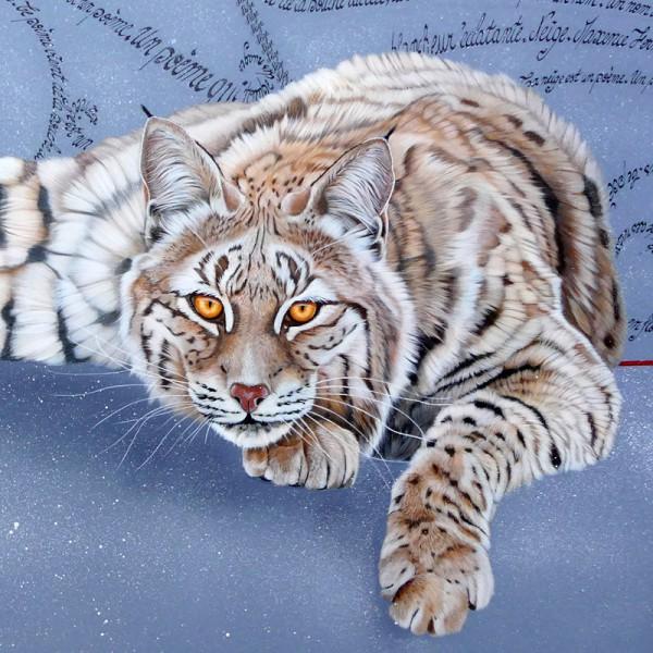 Bobcat (détail)