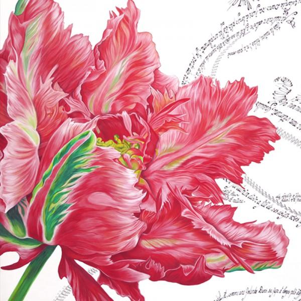 Tulipe detail
